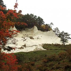 白岩森林公園