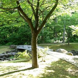 水源地公園