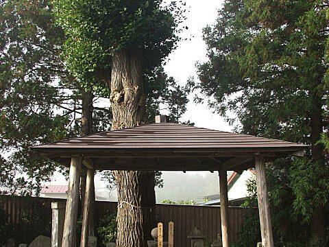 檜山御前の墓