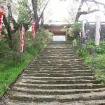 小笠原長時の墓