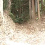 権現堂城跡