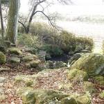 岩井の清水