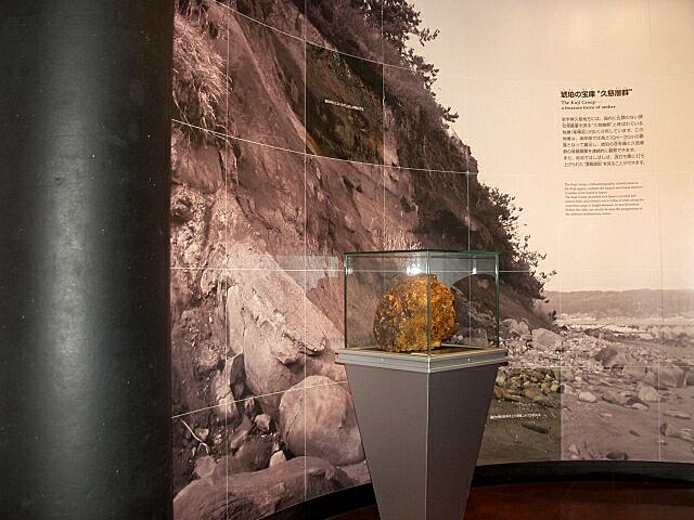 琥珀博物館