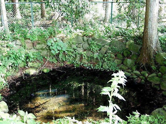 御弥陀羅施の池