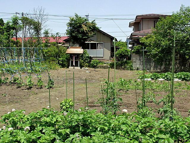 朝日姫住居跡