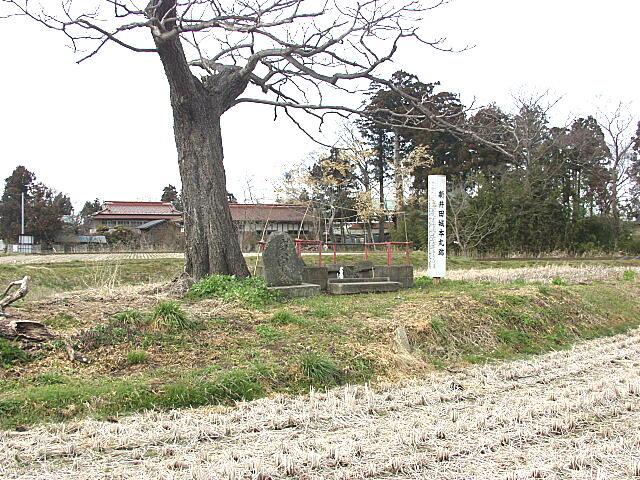 新井田城跡
