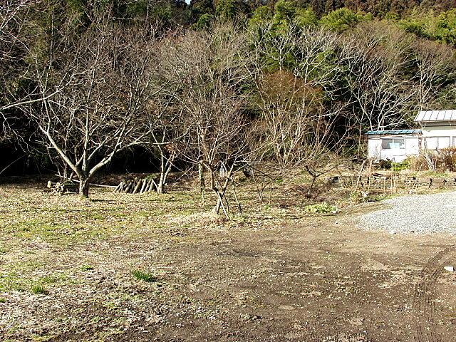 武田家屋敷跡