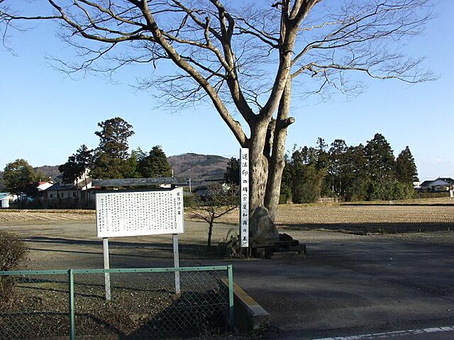逆法印の墓