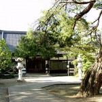 東昌寺マルミガヤ