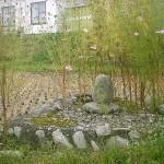 根白石由来石