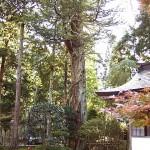 陽徳院霊屋
