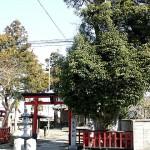 矢野目鹿島神社