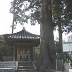 伊達宗高廟