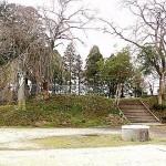 鵜ヶ崎城跡