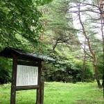 岩崎山金窟跡