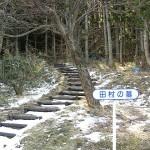 田村家墓所
