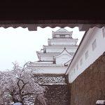 寒の戻りで季節外れの大雪…鶴ヶ城雪桜