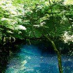 神仏にもあえるかもしれない…十二湖青池