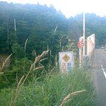 仙台城立退き口、竜の口渓谷→郷六御殿→根白石→宮床を検証
