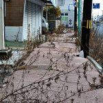 大震災原発事故後3年…富岡町