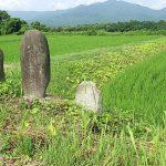 路傍の石の深い歴史、義康首塚