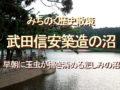 みちのく歴史紀行、武田信安築造の沼、早朝に玉虫が掃き清めている悲しみの沼