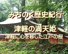 みちのく歴史紀行、津軽の満天姫…津軽に心を移した江戸の桜