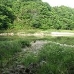 鮎滝渡船場跡