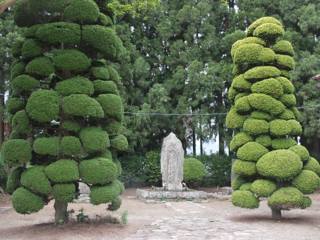 但木土佐の墓